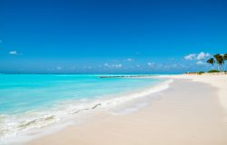Make Your Trip To Turks And Caicos Unforgettable With These Activities